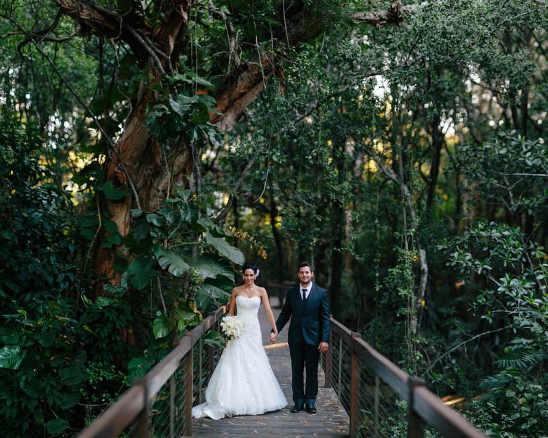 Palm Cove Wedding Photography