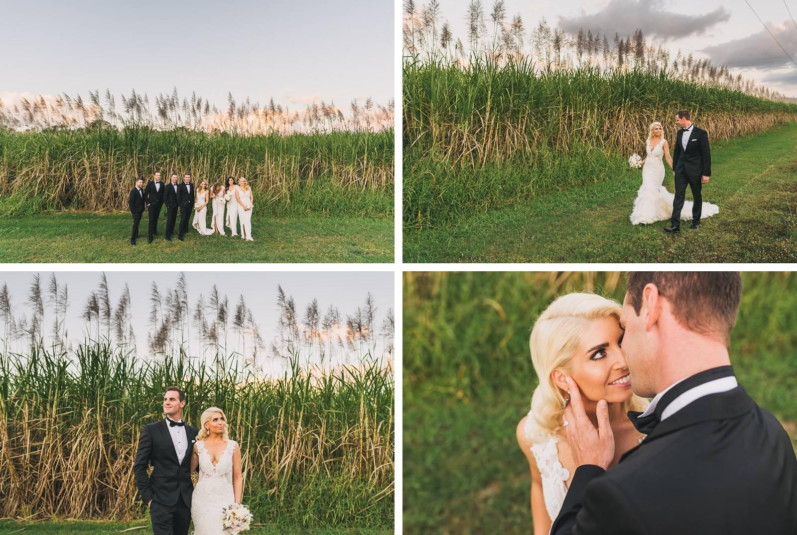 Palm Cove Cane Wedding Photo