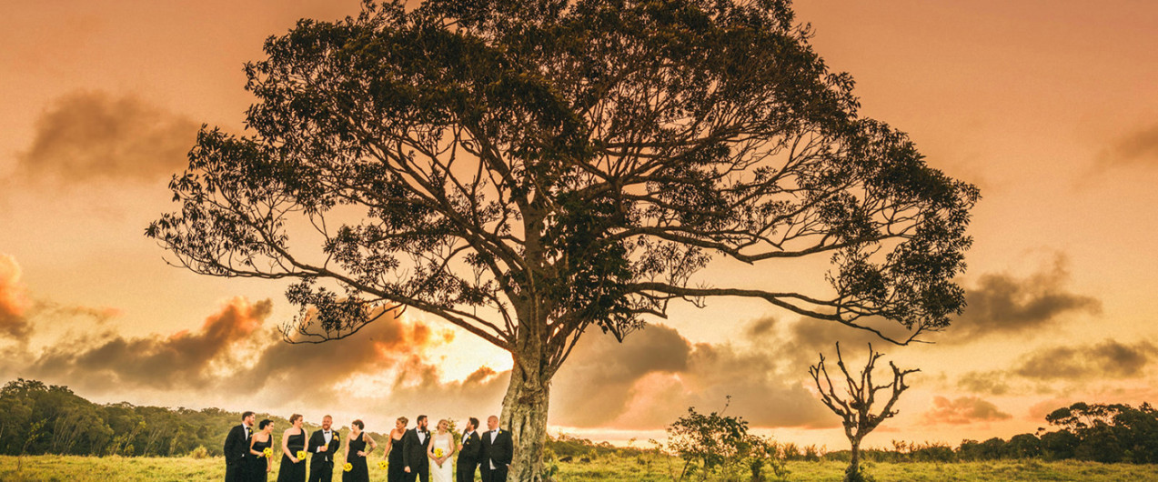 Weddings of 2015 part 4